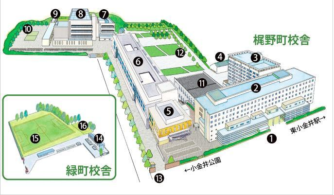 葵 法政 大学 原田